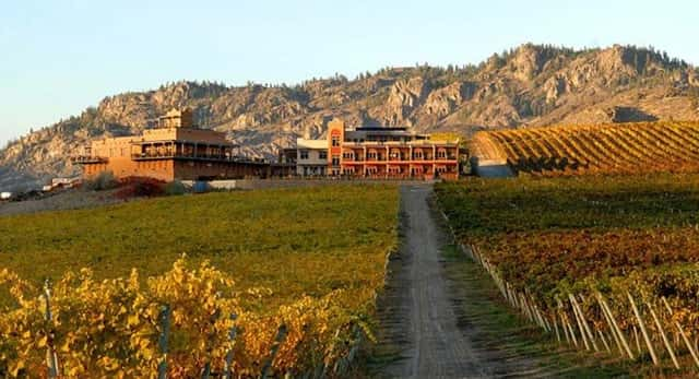 Winery and vineyard