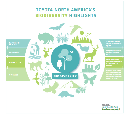 Toyota biodiversity highlights